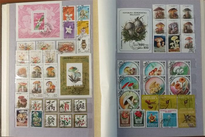 Подарочный альбом марок всего мира - тема Флора - цена по акции!